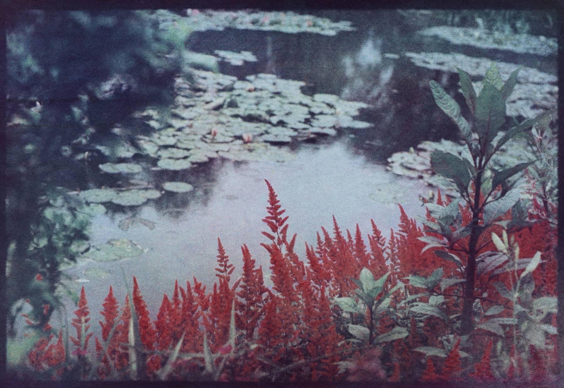Bernard Plossu, Chez Monet, le jardin de l'autre côté, Giverny