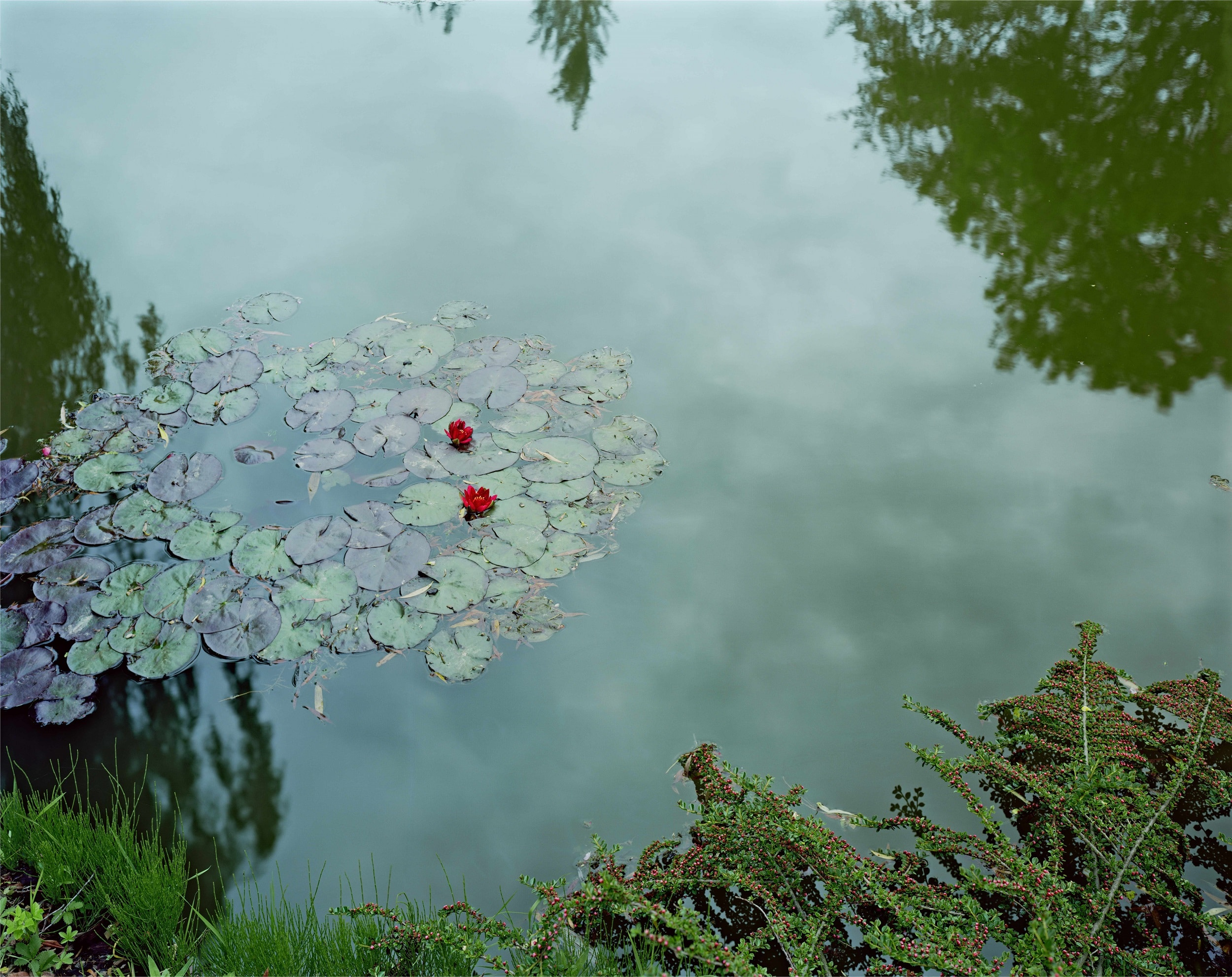 Stephen Shore, Giverny, France