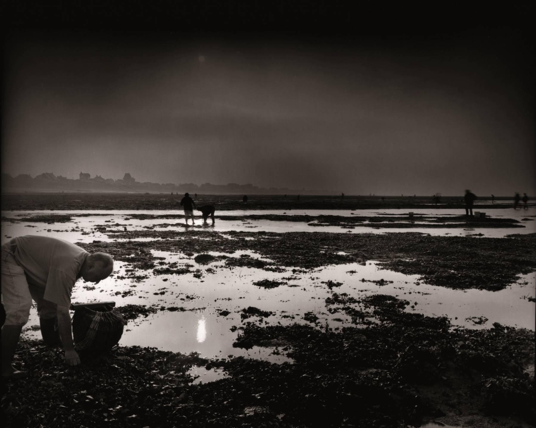 Olivier Mériel, Le Cueilleur de lumière, marais d'équinoxe, Bernières-sur-Mer